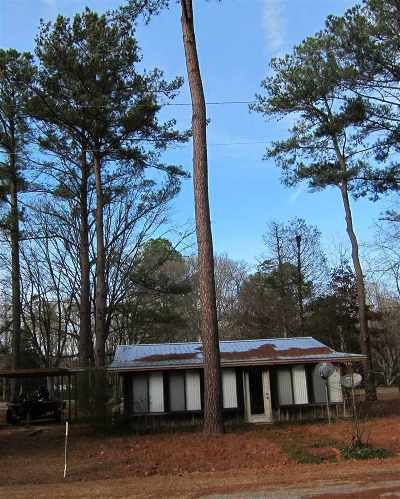 Canton Single Family Home For Sale: 1241 Ratliff Ferry Rd