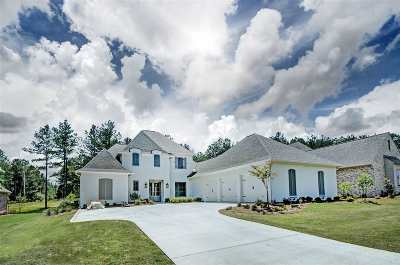 Madison Single Family Home Contingent: 292 Lake Village Dr