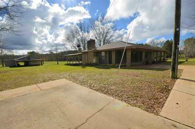 Leake County Single Family Home For Sale: 1056 Rabbit College Rd
