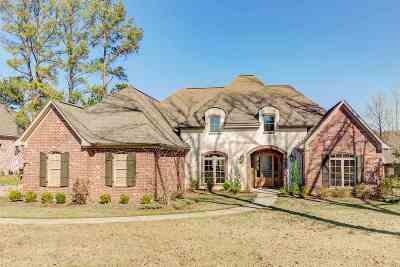 Ridgeland Single Family Home For Sale: 336 Wrenfield Way