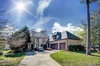 Brandon Single Family Home For Sale: 88 Grandview Cir