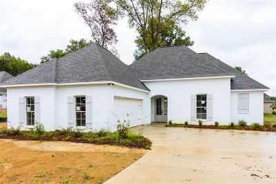 Canton Single Family Home For Sale: 106 Trailbridge Way