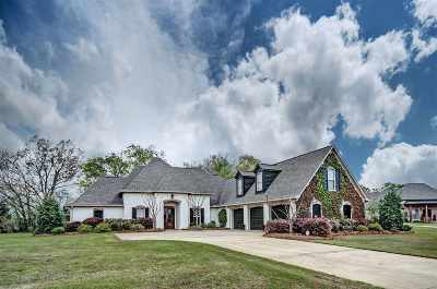 Brandon Single Family Home For Sale: 309 Chartrese Dr