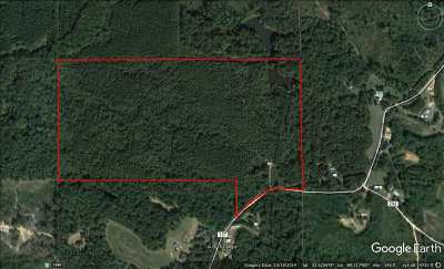 Neshoba County Residential Lots & Land For Sale: 11081 County Road 127