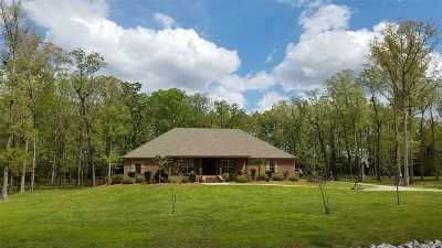 Brandon Single Family Home For Sale: 129 Virginia Valley Dr
