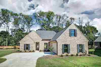 Clinton Single Family Home Contingent: 58 Creekside Cove