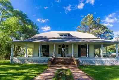 Canton Single Family Home For Sale: 3141 Highway 43 North