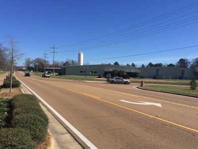 Rankin County Commercial For Sale: 3670 Flowood Dr