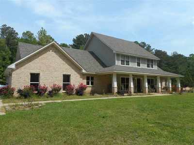 Brandon Single Family Home For Sale: 131 Langford Cv