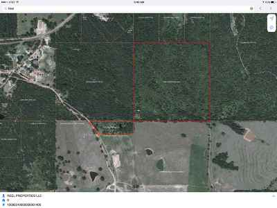 Pinola MS Residential Lots & Land Contingent/Pending: $51,600