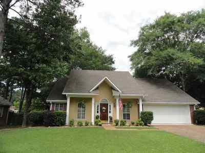 Ridgeland Single Family Home Contingent: 397 Pinewood Ln