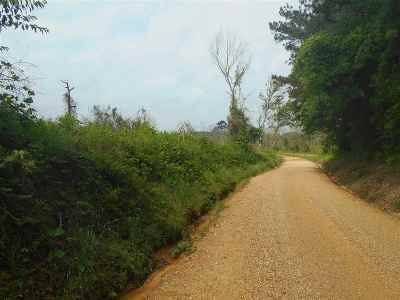 Newton County Residential Lots & Land For Sale: Willis Rd