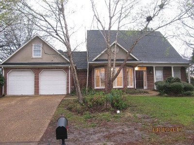 Ridgeland Single Family Home For Sale: 321 Semoia Ln