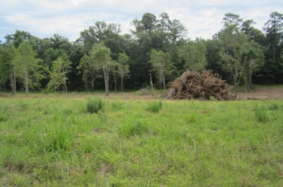 Canton Residential Lots & Land Contingent/Pending: Twelve Oaks Trace