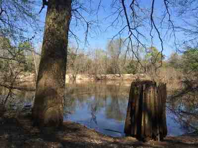 Leake County Residential Lots & Land For Sale: 1 Highway 488 Hwy