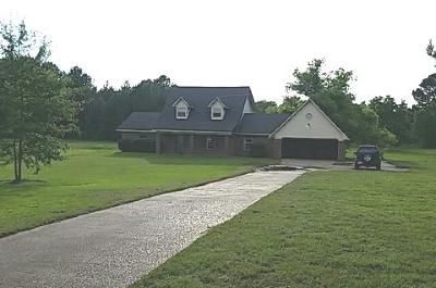 Canton Single Family Home For Sale: 205 Stump Bridge Rd