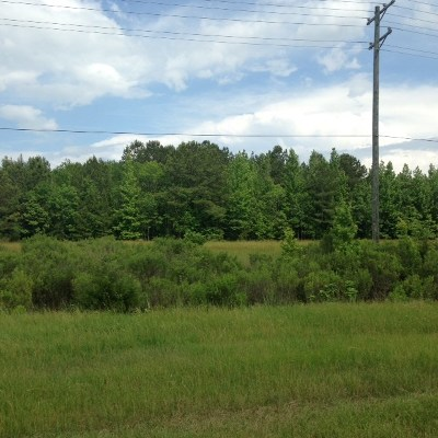 Rankin County Residential Lots & Land For Sale: 2194 Hwy 471
