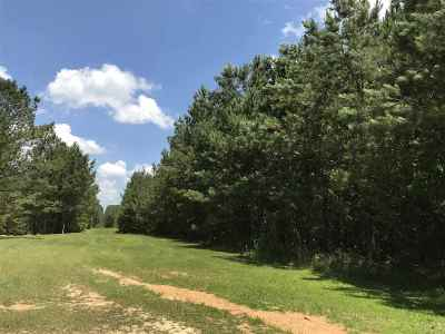 Residential Lots & Land For Sale: 3122b Little Springs Rd