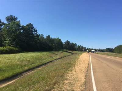Rankin County Residential Lots & Land For Sale: 6694a Hwy 25 Hwy