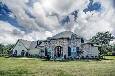 Brandon Single Family Home For Sale: 307 Chartrese Dr