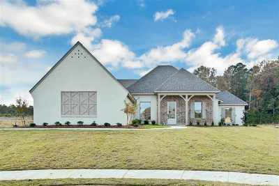 Flowood Single Family Home Contingent: 139 Longleaf Way