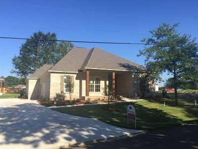 Ridgeland Single Family Home For Sale: 241 N Central Ave #Lot 8