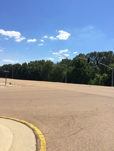 Canton Residential Lots & Land For Sale: Nissan Parkway