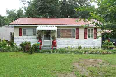 Canton Single Family Home For Sale: 376 E Dinkins St