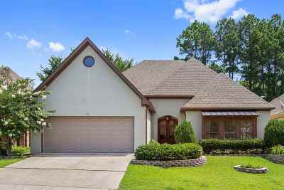 Ridgeland Single Family Home For Sale: 102 Hawks Nest Bluff
