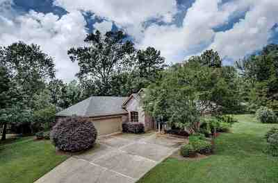 Canton Single Family Home Contingent: 413 Meadowgreen Ln
