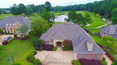 Brandon Single Family Home For Sale: 134 Pinnacle Cir