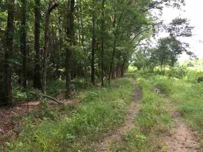 Leake County Residential Lots & Land For Sale: 800 E Hwy 487 Hwy