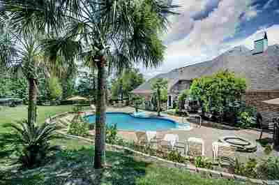 Brandon Single Family Home For Sale: 127 Poplar Ridge Dr