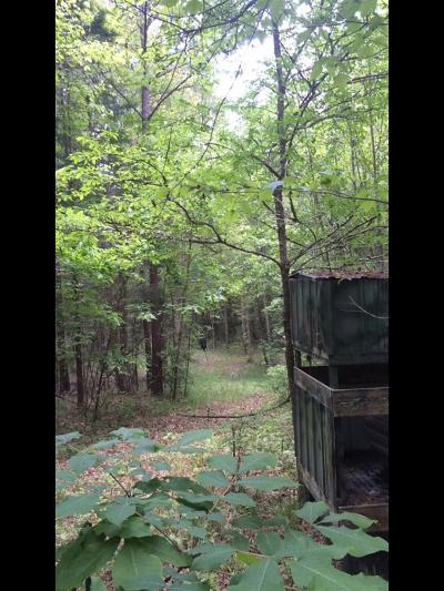 Leake County Residential Lots & Land For Sale: Red Water Rd