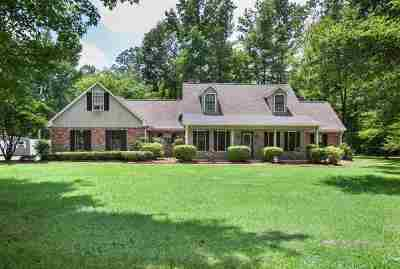 Canton Single Family Home For Sale: 347 Holmes Hollow Ln