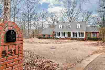 Brandon Single Family Home For Sale: 531 North Lake Dr