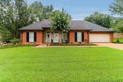 Ridgeland Single Family Home For Sale: 401 Pinewood Ln