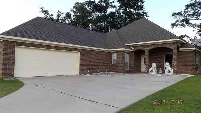 Byram Single Family Home For Sale: 117 Ashley Park Dr