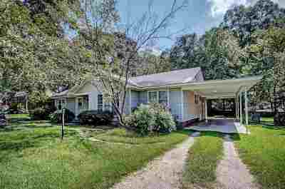 Canton Single Family Home For Sale: 229 Ray St