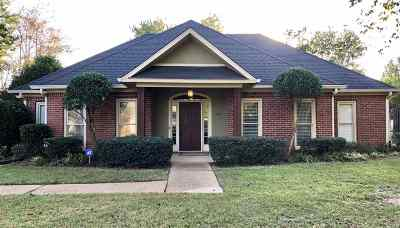 Ridgeland Single Family Home For Sale: 384 Red Eagle Cir