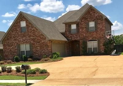 Brandon Single Family Home For Sale: 303 Tracey Cv