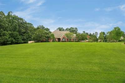 Brandon Single Family Home For Sale: 810 Westerly Dr