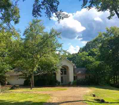 Madison Single Family Home For Sale: 42 Greystone Dr