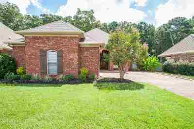 Pearl Single Family Home For Sale: 544 Asbury Lane Dr