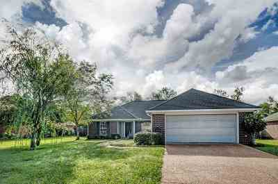 Flowood Single Family Home Contingent: 728 Prominence Dr