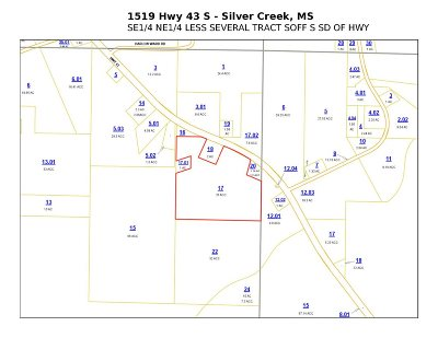 Residential Lots & Land For Sale: 1519 S Hwy 43