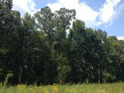 Residential Lots & Land For Sale: Hwy 43 North