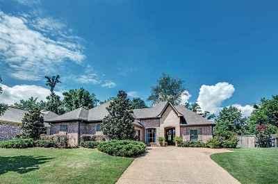 Brandon Single Family Home For Sale: 267 E Pinebrook Dr