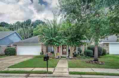 Brandon Single Family Home For Sale: 120 Basswood Cir