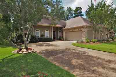 Brandon Single Family Home For Sale: 401 Dunlin Ct